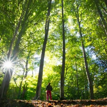 Natur og miljø